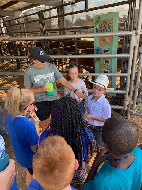 kids learning about live stock