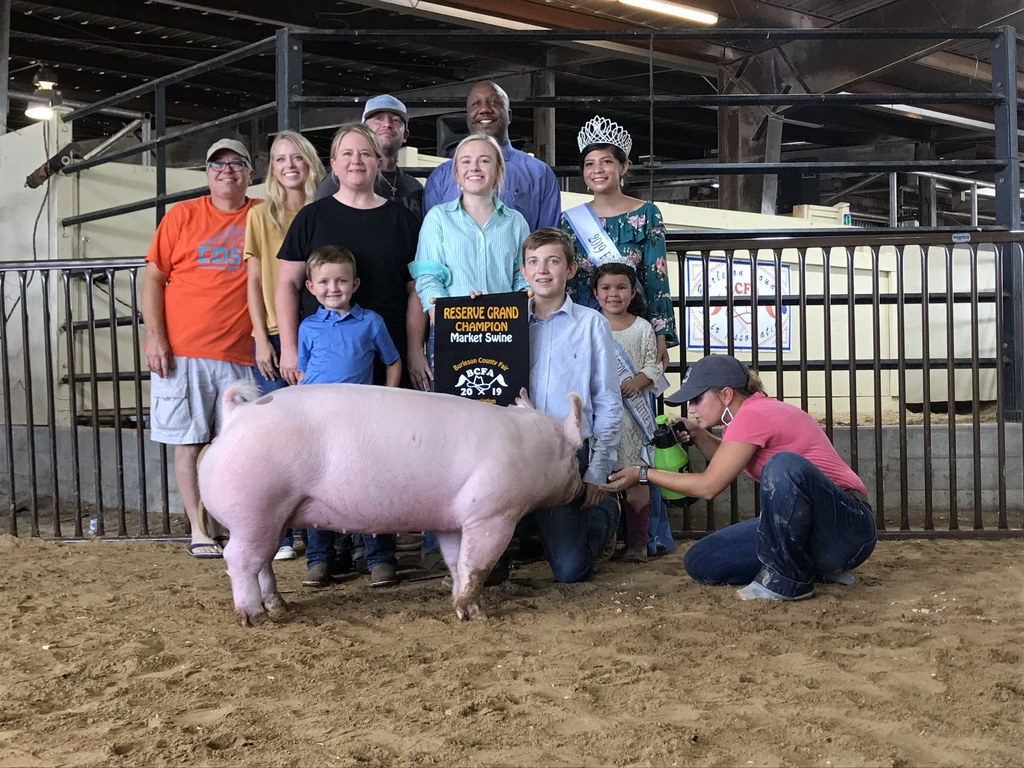 Snook boy wins Grand Reserve at the pig show